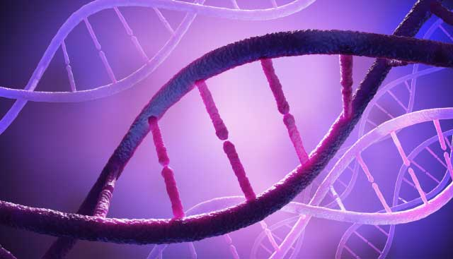Purple DNA Ovarian Cancer