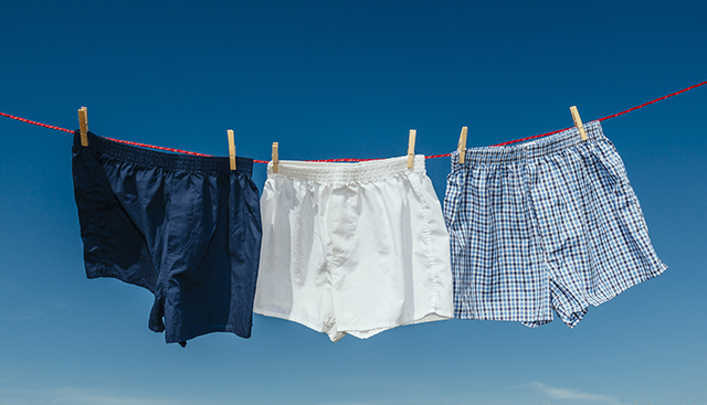 Mens Boxer Shorts Clothes Line