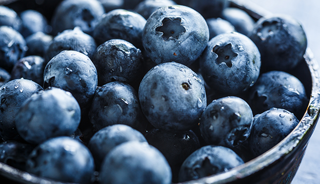 Antioxidants Lung Cancer