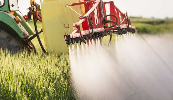 What You Need to Know about Glyphosate