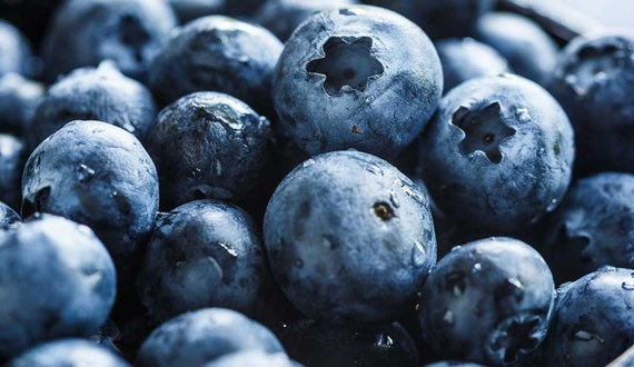Do Antioxidants Cause Lung Cancer to Spread