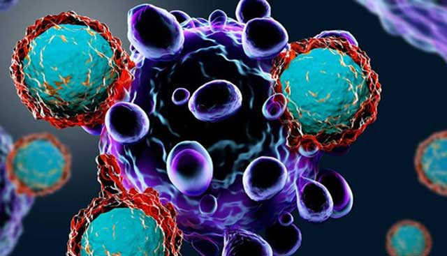 T Cells Attacking Cancer Cell 640