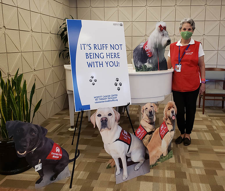 Volunteer Tina Costello poses with the cardboard pet therapy dog cut outs in Moffitt's main lobby.