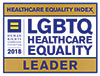 Healthcare Equality Index Moffitt