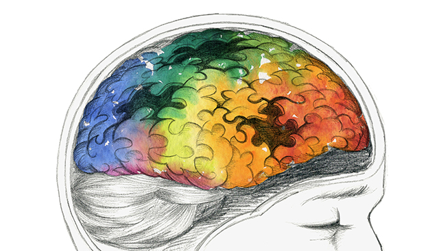 Colorful-Brain-Puzzle.jpg